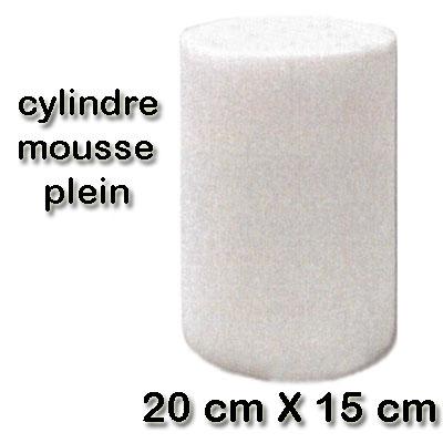filtre-cylindre-mousse-20-cm-x-15-cm-400-x-400-px